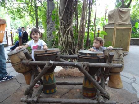 Jungle Drumming